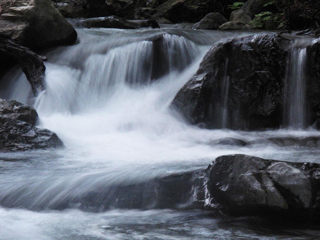 esalen-stream